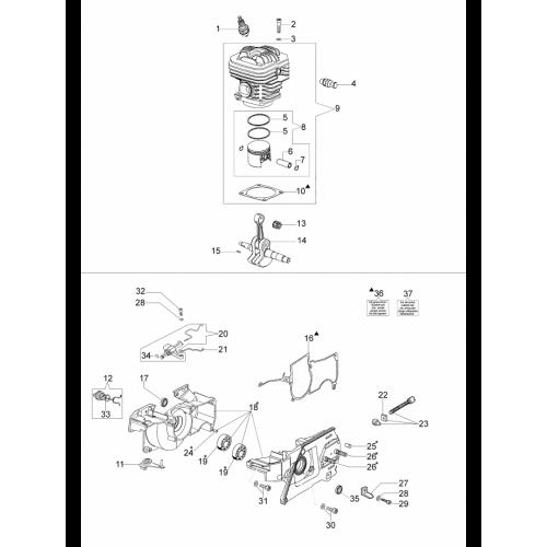 Бензопила Oleo-Mac, GS720, Двигун і блок циліндрів в Украине
